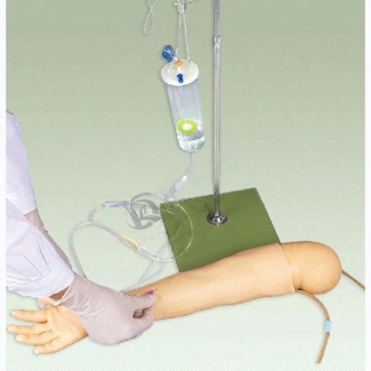 高级儿童手臂静脉穿刺训练模型