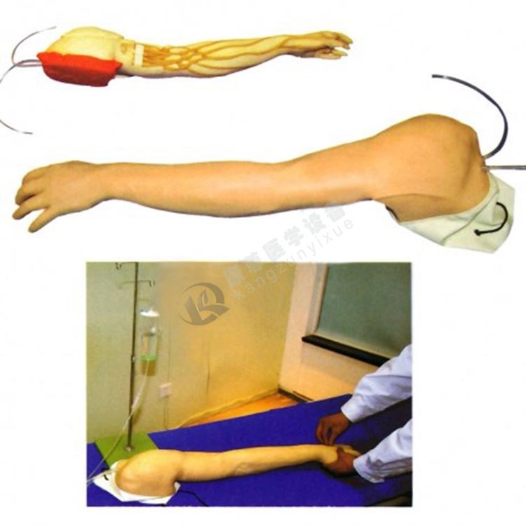 全功能完整静脉穿刺及注射训练手臂模型