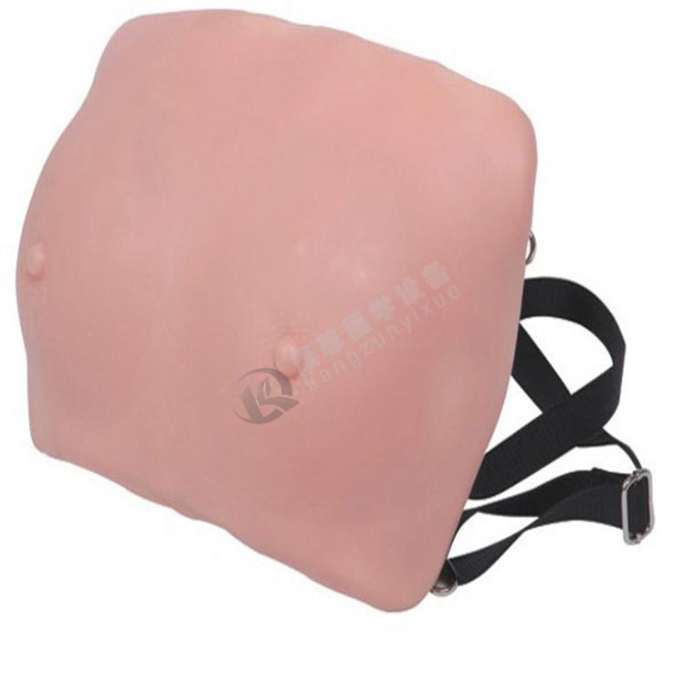 高级乳房检查模型