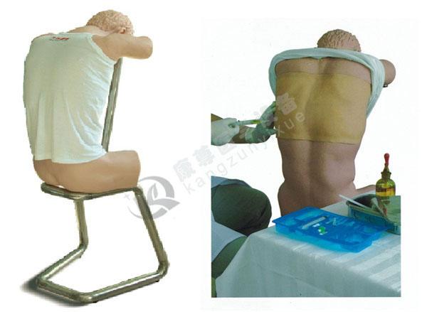 胸腔(背部)穿刺训练模型