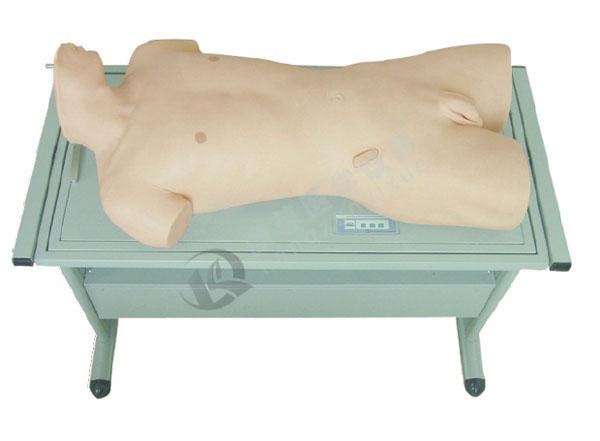 肝脓肿穿刺与胸腔穿刺训练模型