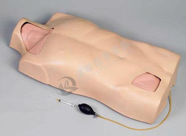 中心静脉穿刺注射躯干模型